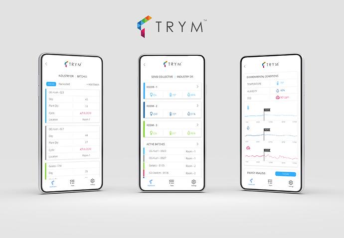 20181106-trym-3-screens%400%2C5x