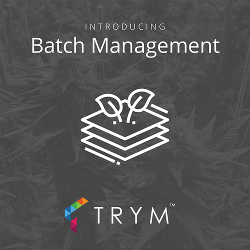 1811_Trym_social_features_batch_management