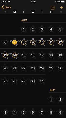 10-Calendar%20v2%20Dopo