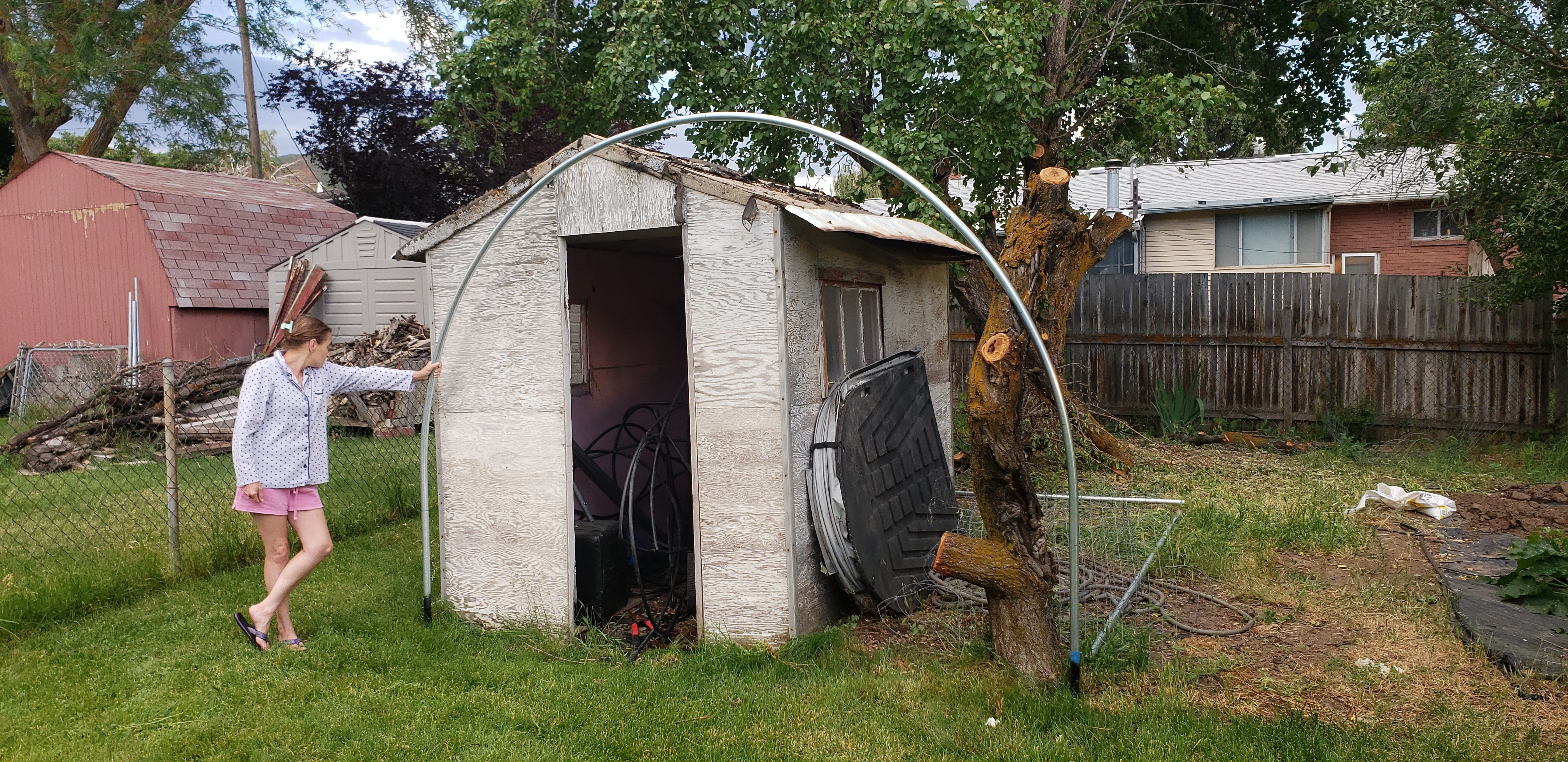 Backyard Greenhouse - Outdoor Growing - Growers Network Forum