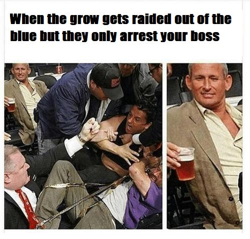 whengrowgetsraided